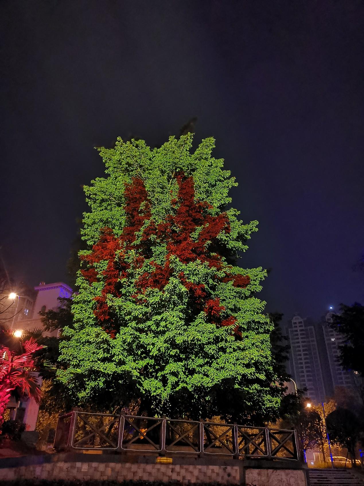 """又逢元宵佳节时 NEC英雄打造光影""""魔树""""扮靓蓉城不夜天-视听圈"""